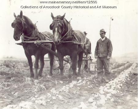 Kemp McLaughlin farm, Dyer Brook, ca. 1930