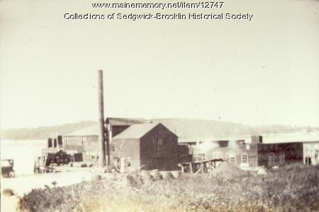 Mayo Sardine Cannery, Brooklin, 1927