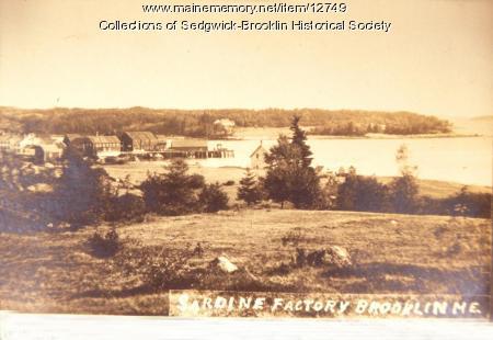 Sardine Canneries at Brooklin