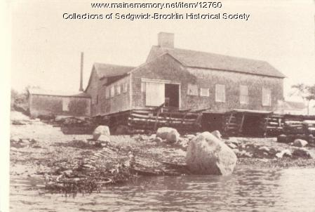 Blueberry Cannery, Brooklin