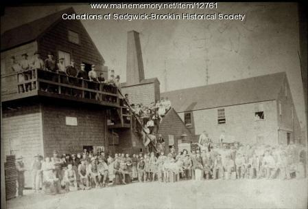 Workers at Steven's Sardine Cannery, Brooklin
