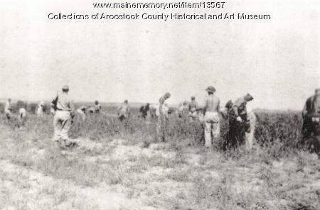 POW farm workers, Houlton, 1944