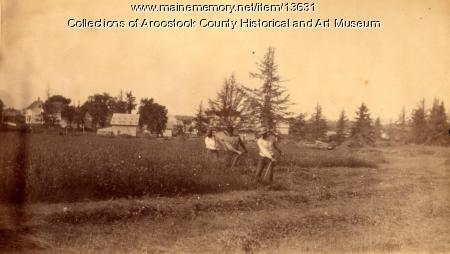 Mowing hay, Houlton, ca. 1895