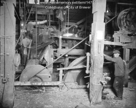 Chipper, Brewer, 1921