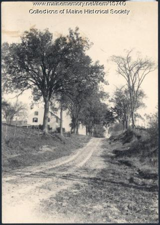 Longfellow Elms in Gorham, 1903