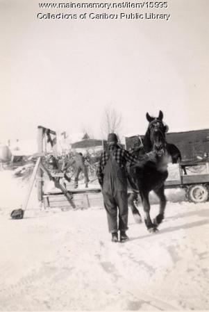 Hauling ice, Collins Pond, Caribou, ca. 1942