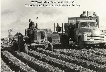 Myron Gartley Farm, Presque Isle, 1976