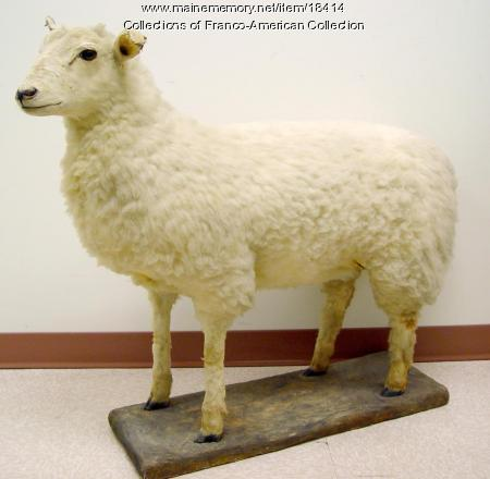 Stuffed sheep, Lewiston, ca. 1890s
