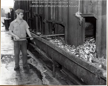 Worker at Deep Sea Products, South Portland