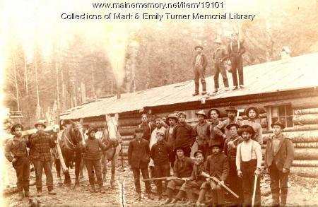 Woods camp, Aroostook County, ca. 1890