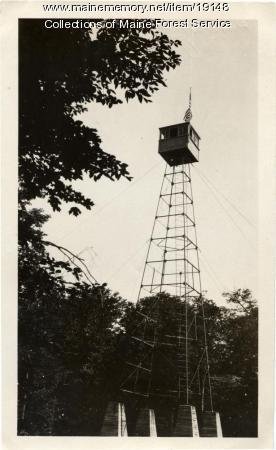 Hardwood Mountain fire lookout tower, 1925