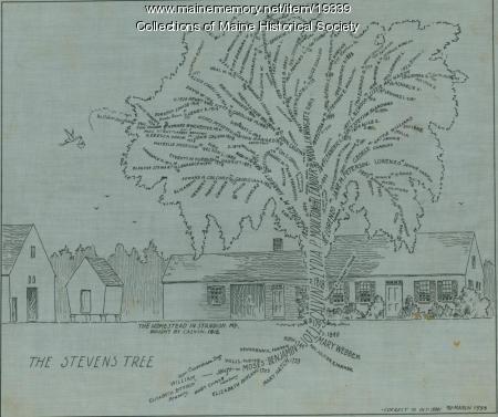Stevens family tree, 1933