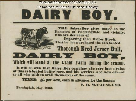 Dairy Boy bull offer, Farmingdale, 1862