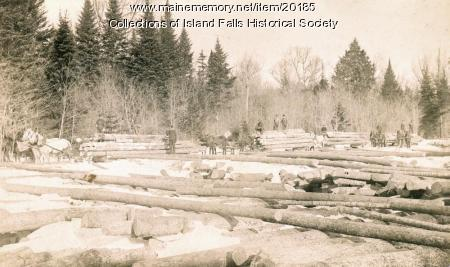 Emerson Logging Company, Stacyville, ca. 1895