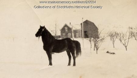 Oberg farm, Stockholm, c. 1920