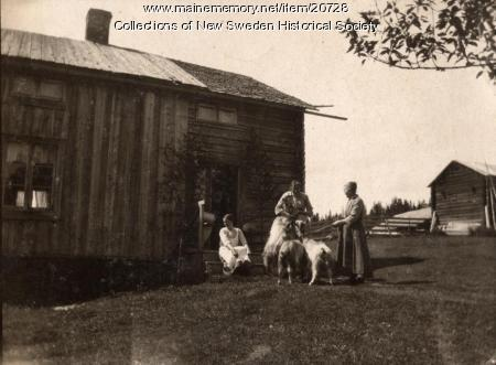 Farm, New Sweden, ca. 1910