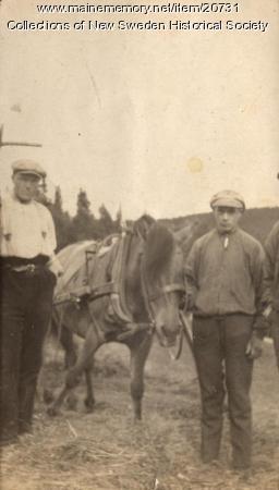 New Sweden farm, ca. 1910