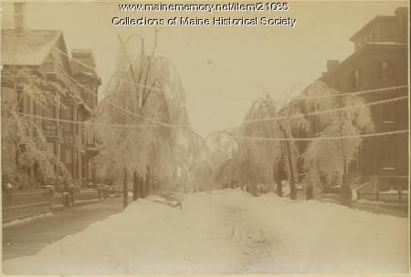 Deering Street, Portland, 1886