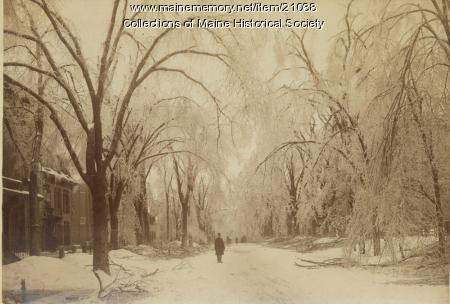 State Street, Portland, after ice storm, 1886