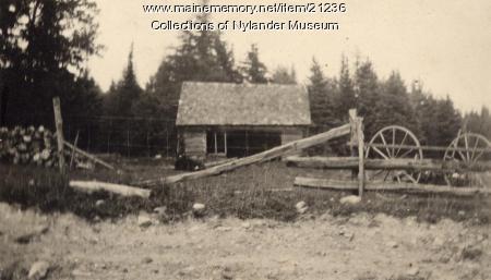 Barnyard in Woodland, ca 1922