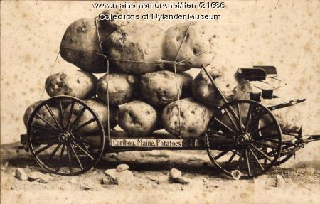 Joke photograph promoting Aroostook County Potatoes, Caribou, ca. 1922