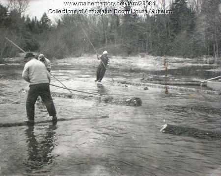 Long log pine drive, Ambajejus, ca. 1950