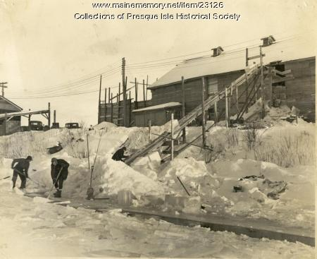 Loading ice, Presque Isle Stream, 1946