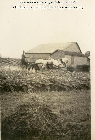 King Farm, Presque Isle, ca. 1920
