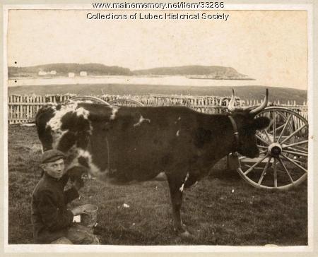 Raymond Andrews farm, Lubec, ca. 1935