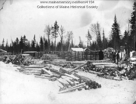 Views of the Maine woods, ca. 1900
