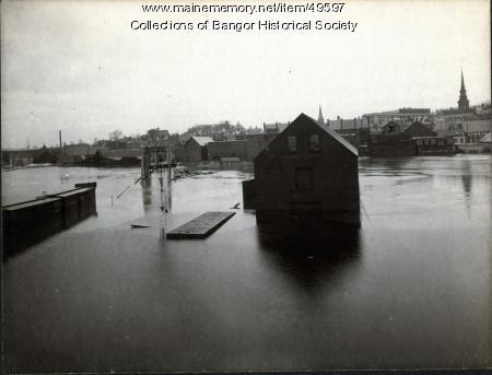 Flood on the Penobscot, Bangor, 1902