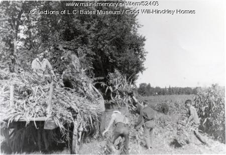 Good Will Boys Harvesting Corn, Fairfield, ca. 1935