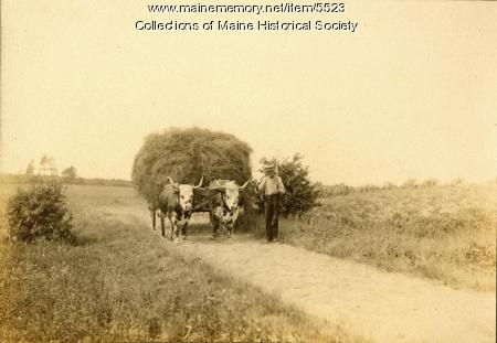 Bringing in the hay at Nonesuch Farm, ca. 1900