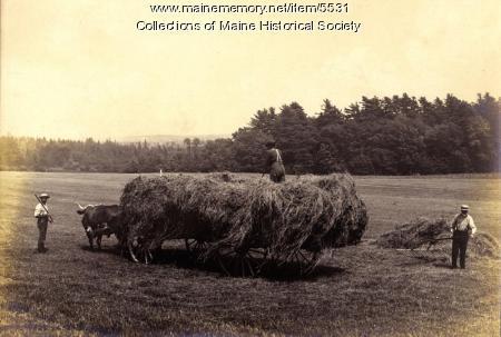 Nonesuch Farm, Scarborough, ca. 1900