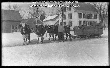 Ox team, Upper Main Street, Strong, ca. 1910