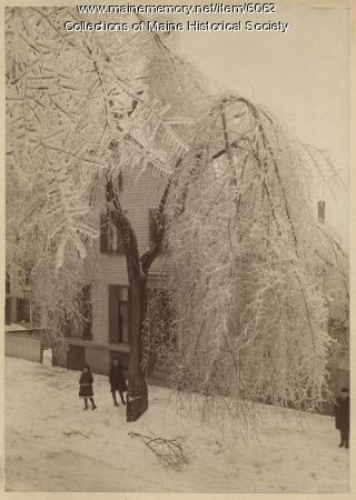 Oxford Street, Portland, 1886