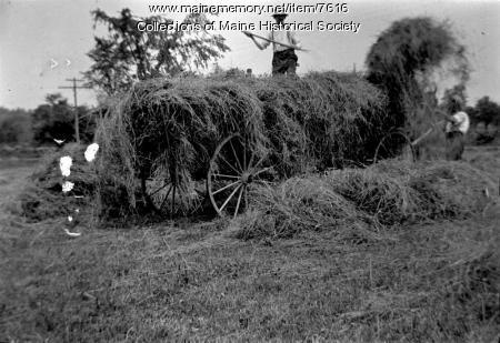 Haymaking, ca. 1910