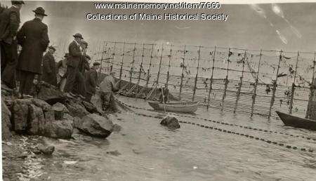 Getting ready to unload weir, ca. 1930