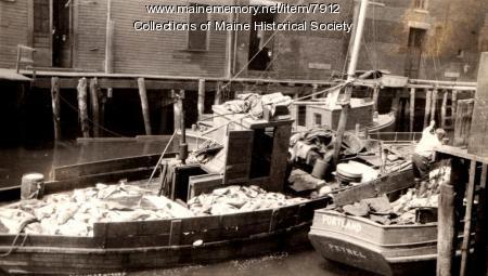 Unloading the Petrel, Portland, 1931