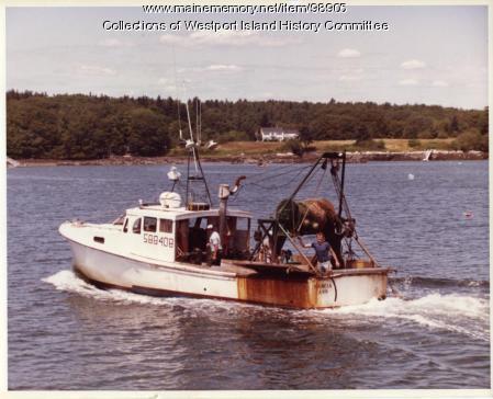 Trawl Survey for Maine Yankee, Westport Island, ca. 1978