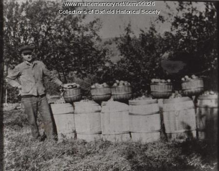 Greenleaf Walton's apple crop, East Dixfield, ca. 1890