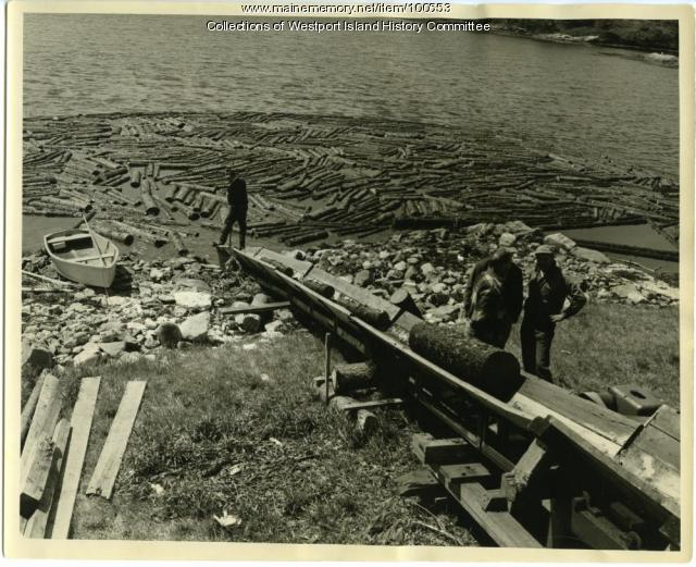 Load of pulp arrives, Westport Island, 1957