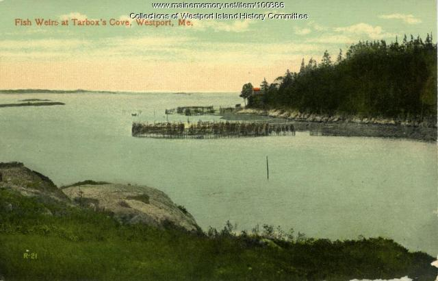Fish weirs at Tarbox Cove, Westport Island, ca. 1908