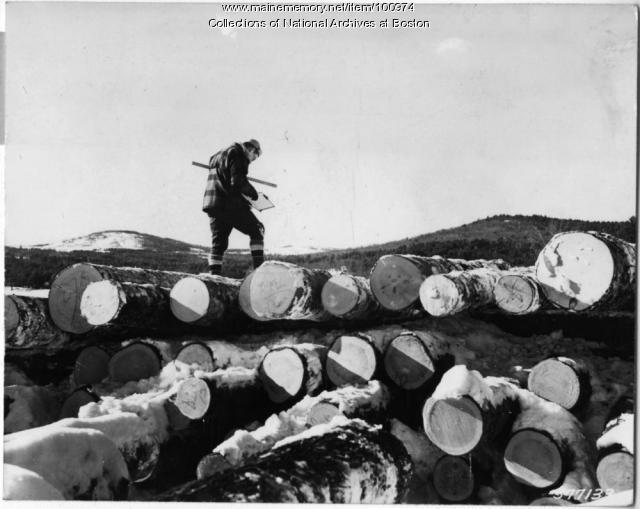 U.S. Forest Service log scaler, Bear Pond, 1939