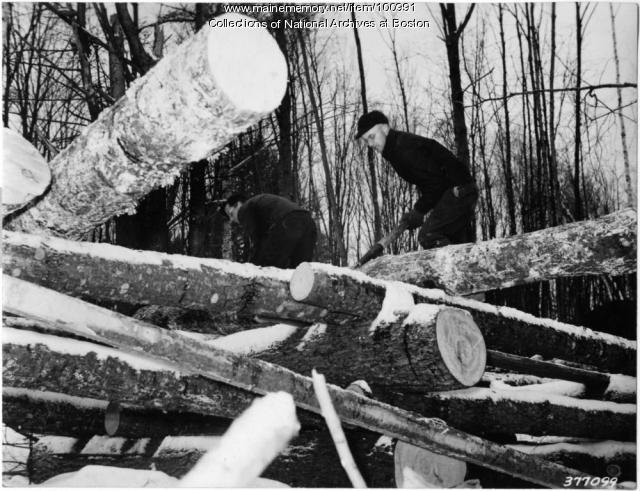 Rolling logs on rollway, Norway, 1939