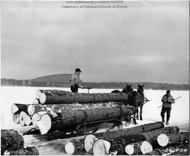 Hardwood logs unloaded on ice, Lovewell Pond, 1938