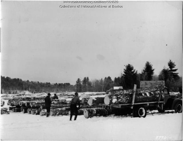Unloading logs, Lake Pennesseewassee, 1939