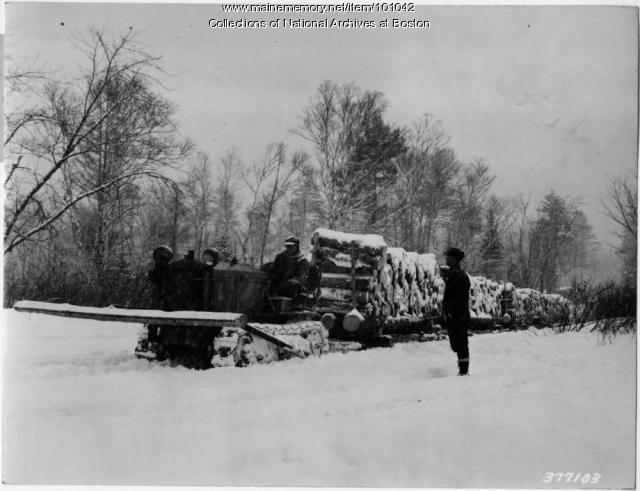 Sleds of pulpwood, Magalloway Township, 1939