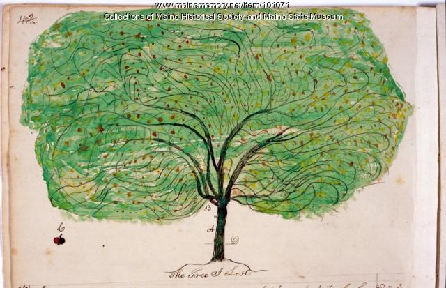 John Martin apple tree, Bangor, ca. 1862