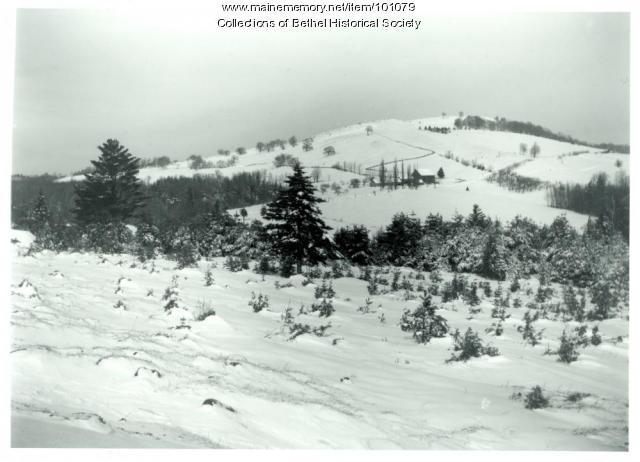 Bird Hill, Bethel, ca. 1905